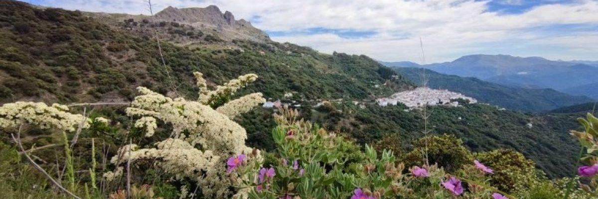 Ruta por la Serranía de Ronda